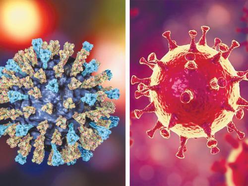 Вакцина от коронавируса. Вакцину от коронавируса в России сделают из вируса кори
