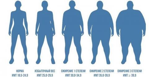 Ожирение 2 степени: как лечить заболевание