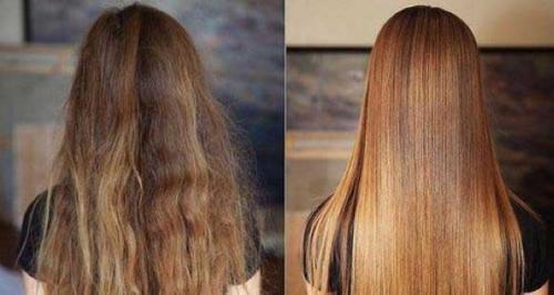 Оливковое масло для волос применение. Правила применения оливкового масла для волос