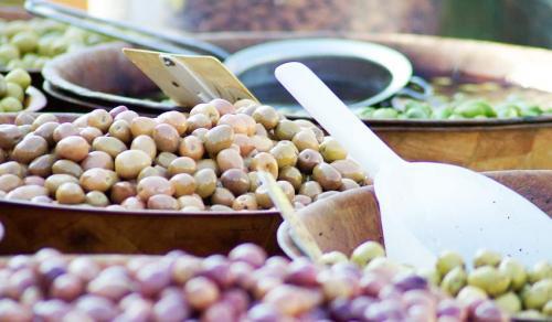 Оливковое масло для волос польза и вред. Общая информация о растении, его состав и полезные свойства