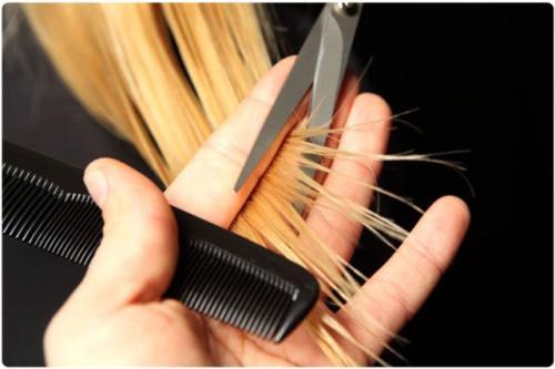 Оливковое масло для кончиков волос. Избавляемся от секущихся кончиков с помощью оливкового масла