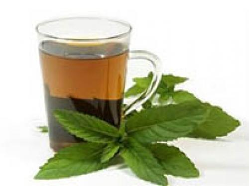 Чай с мятой и мелиссой. Как правильно заваривать чай с мелиссой