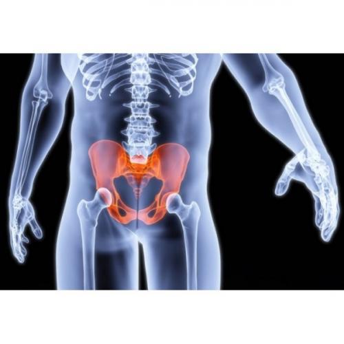 Застой крови в малом тазу у мужчин упражнения. Улучшение кровообращения в малом тазу